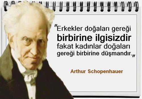arthur schopenhauer kitap incelemesi
