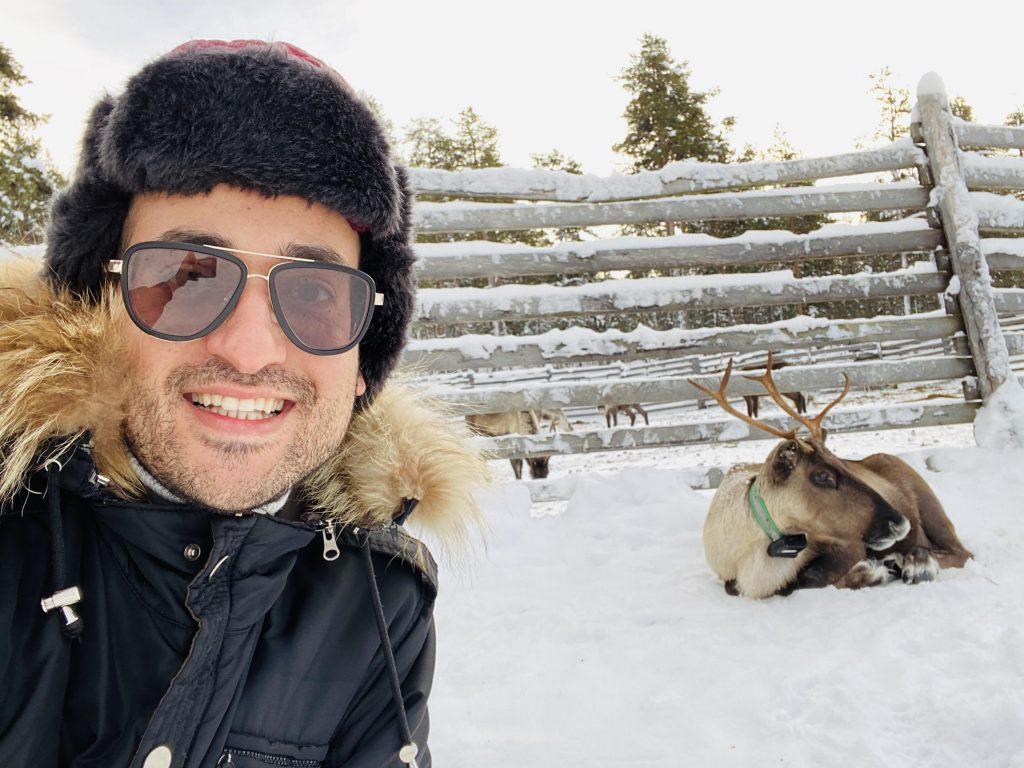 geyik turu lapland