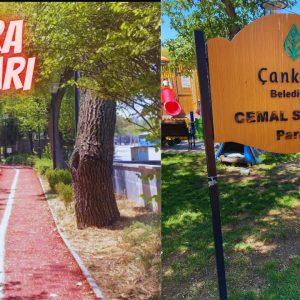 cemal sureya parkı